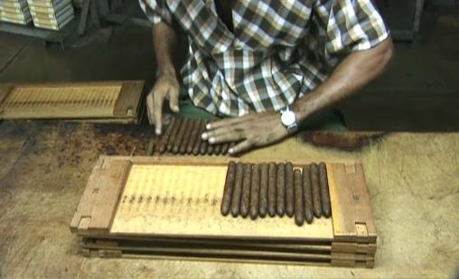 Différents modules de cigares