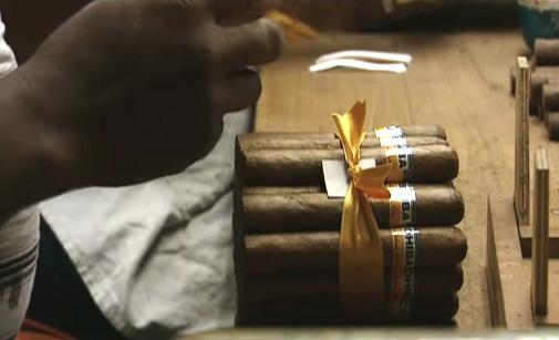 Différentes tailles de cigares