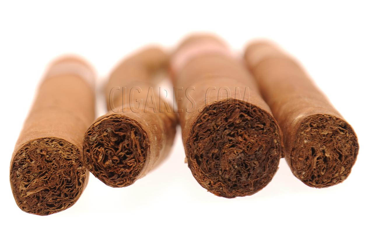cigares de différentes tailles