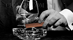 dégustation de cigare