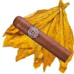 Tabac pour cigares : origine et caractéristiques