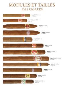 tailles et modules des cigares