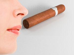 dégustation cigare