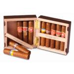 petit cigare cubain petit robusto