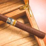 Combien de temps les cigares peuvent-ils se garder sans cave ou humidor?