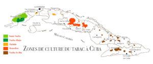 culture du tabac à Cuba
