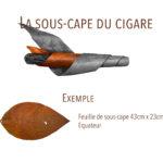 sous-cape cigare