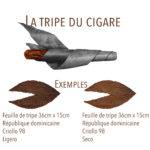 tripe du cigare