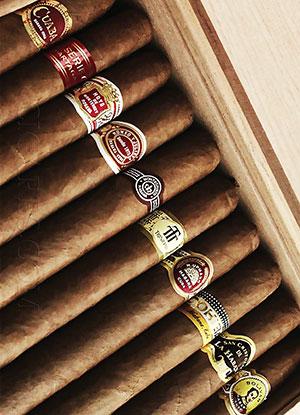 sélection de cigares cubains
